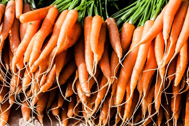 Row of carrots.