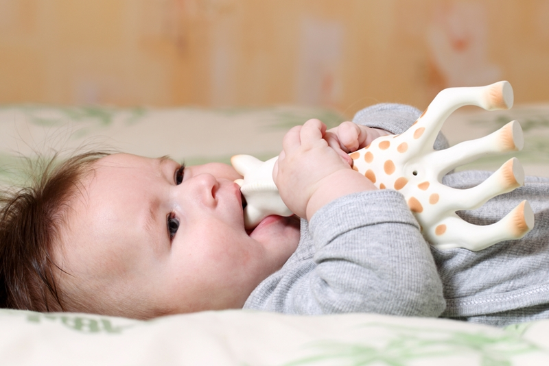Babies may chew on toys to alleviate teething pain.