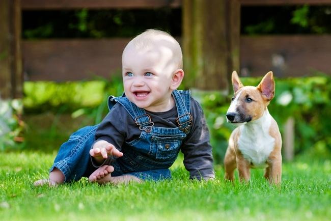 Learn-what-happens-when-babies-grow-their-first-teeth.jpg